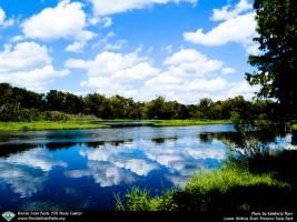 Lower Wekiva River Preserve