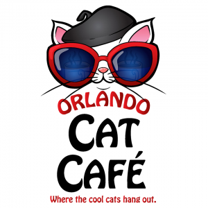 Orlando Cat Cafe - Parties