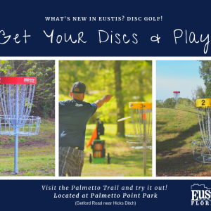 Eustis Disc Golf at Palmetto Point Park