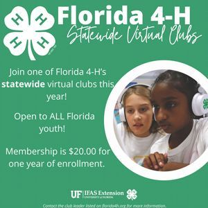 Florida 4H Statewide Virtual Clubs